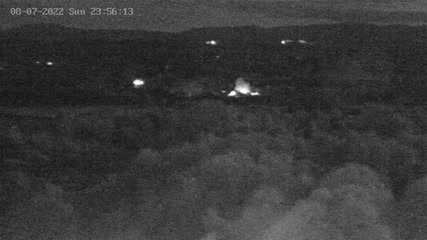 Trzcinica - Webcam